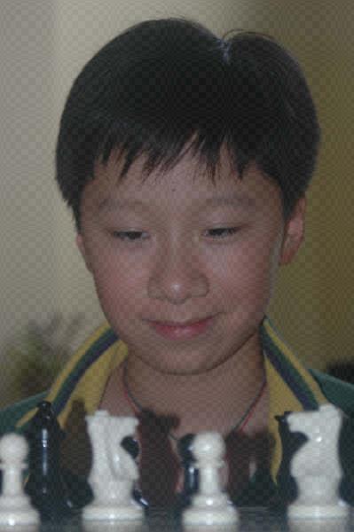 Zi Yi (Joey) Qin
